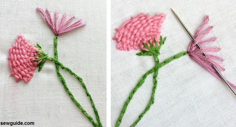 kadai kamal flowers